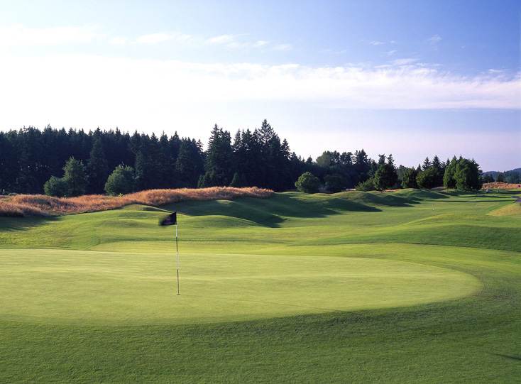 image of golf hole green with black flag